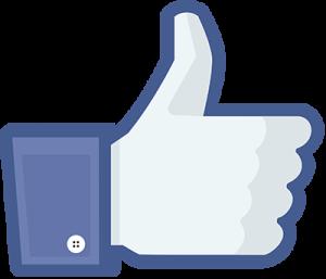 fb-like(400)