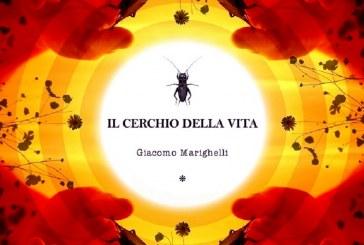 """""""IL CERCHIO DELLA VITA"""", GIACOMO MARIGHELLI"""
