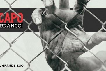 """""""IL GRANDE ZOO"""", CAPOBRANCO"""